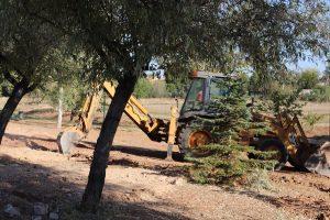 En marcha las obras del nuevo parque canino de Manzanares